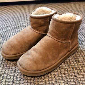 Mini classic chestnut UGG boot